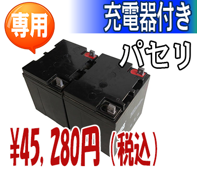 パセリ用鉛酸バッテリー(充電器付)