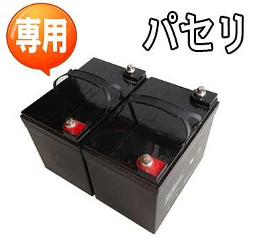 パセリ用鉛酸バッテリー